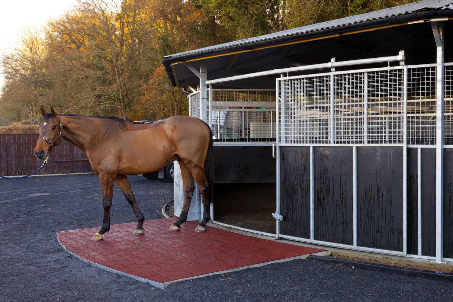 EASYFIX EQUINE WALKER TILES