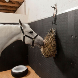 softwall easyfix equine