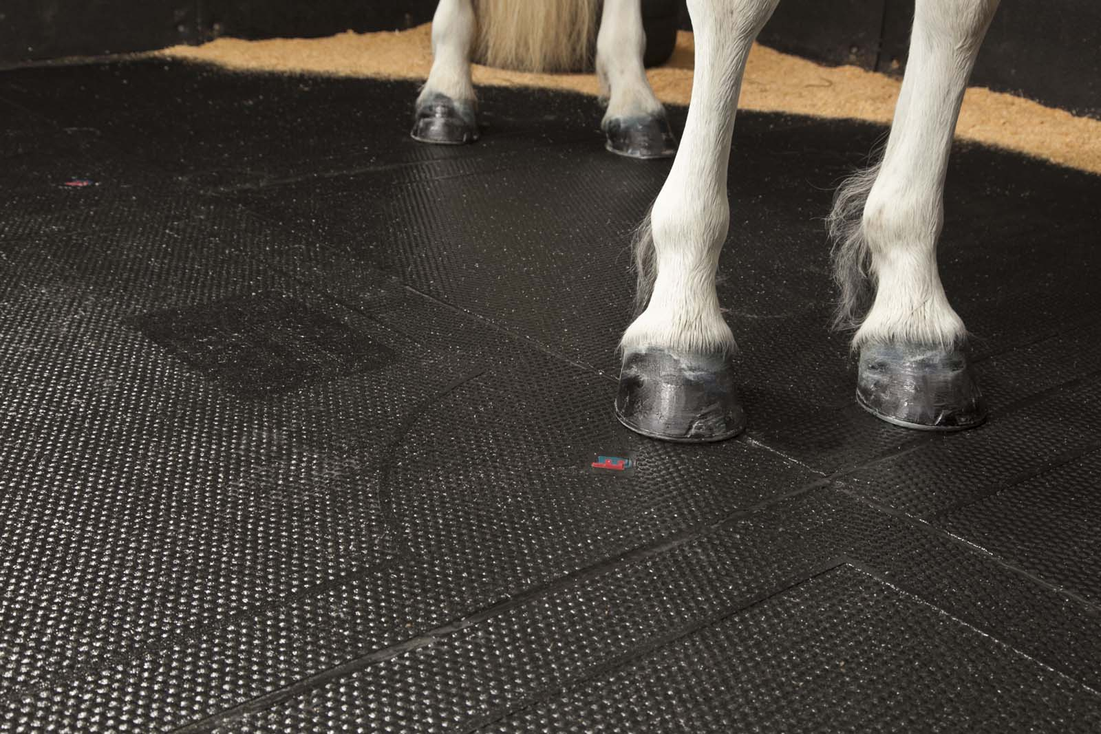 Stable Comfort & Safety 4 stable delux from easyfix equine 1